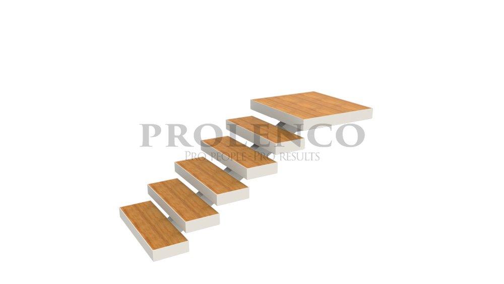 מדרגות ברזל ועץ דגם C 120