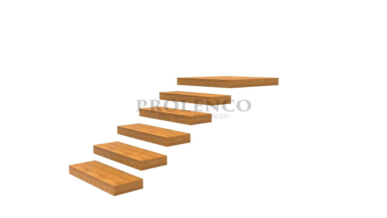 מדרגות מרחפות  E100.83