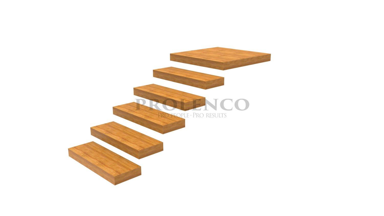 מדרגות מרחפות E100.84