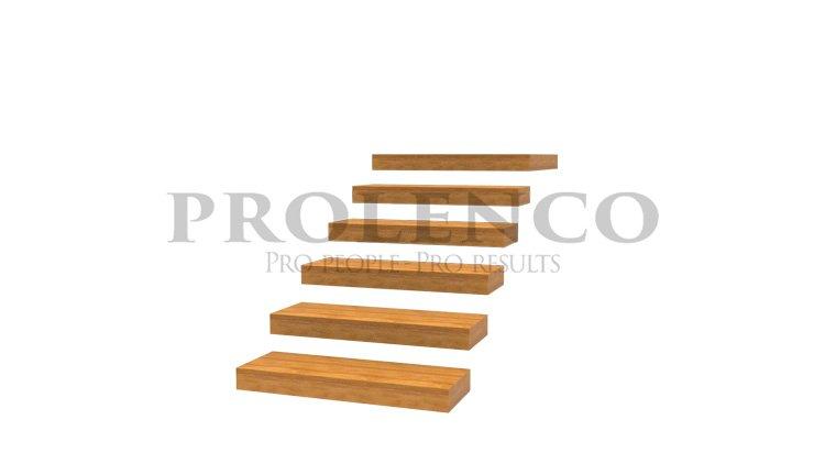 מדרגות מרחפות E100.962