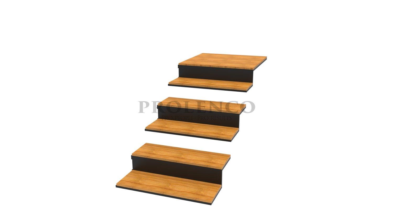מדרגות מרחפות E220.88